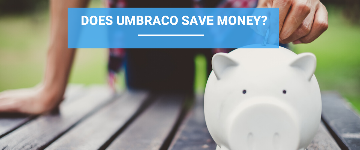 Does Umbraco Save Money?