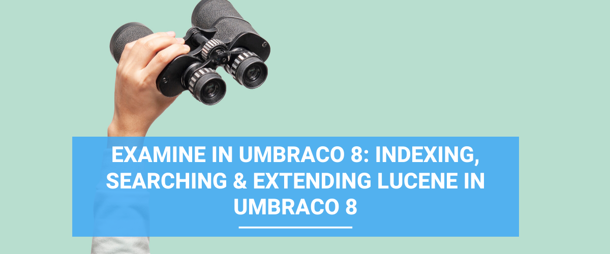 Examine in Umbraco 8